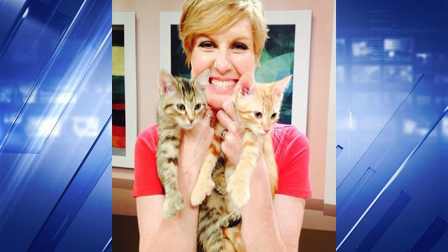 Meteorologist Meghan Danahey poses with our Pets of the Week, Harmony and Sunburst.