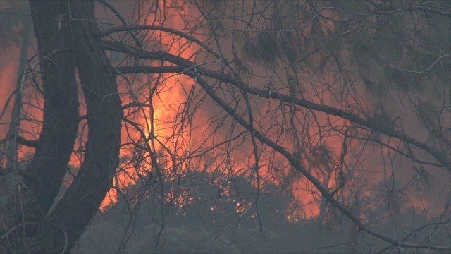 The Bute Fire, at around 65,000 acres, burns about 70 miles east of Sacramento.