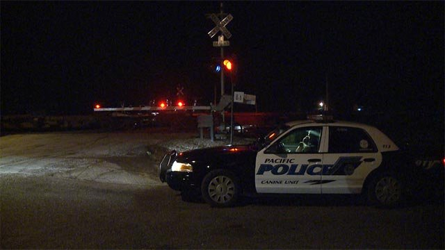 A pedestrian was fatally struck by a train at the Olive Street crossing Wednesday night.