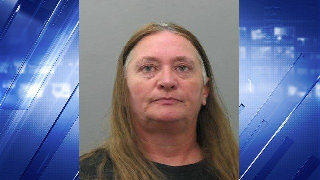 Tracy Neisz, 53,  is accused of robbing the US Bank in south St. Louis County on Wednesday.