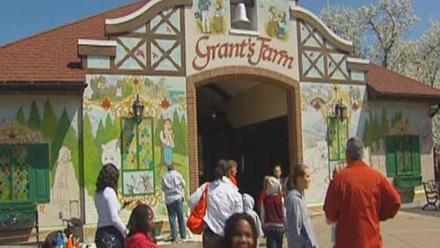 Grant's Farm (Credit: KMOV)