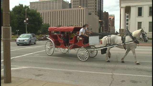 Carriage ride  (Credit: KMOV).
