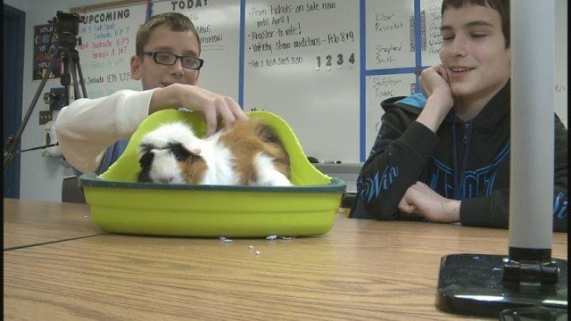 A Belleville high school offers space for special needs students to practice social skills (Credit: KMOV)