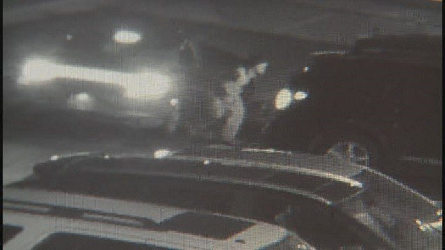 One of the 3 suspects accused of car break-ins at the Planet Fitness in Edwardsville (Credit: Edwardsville Police Department)